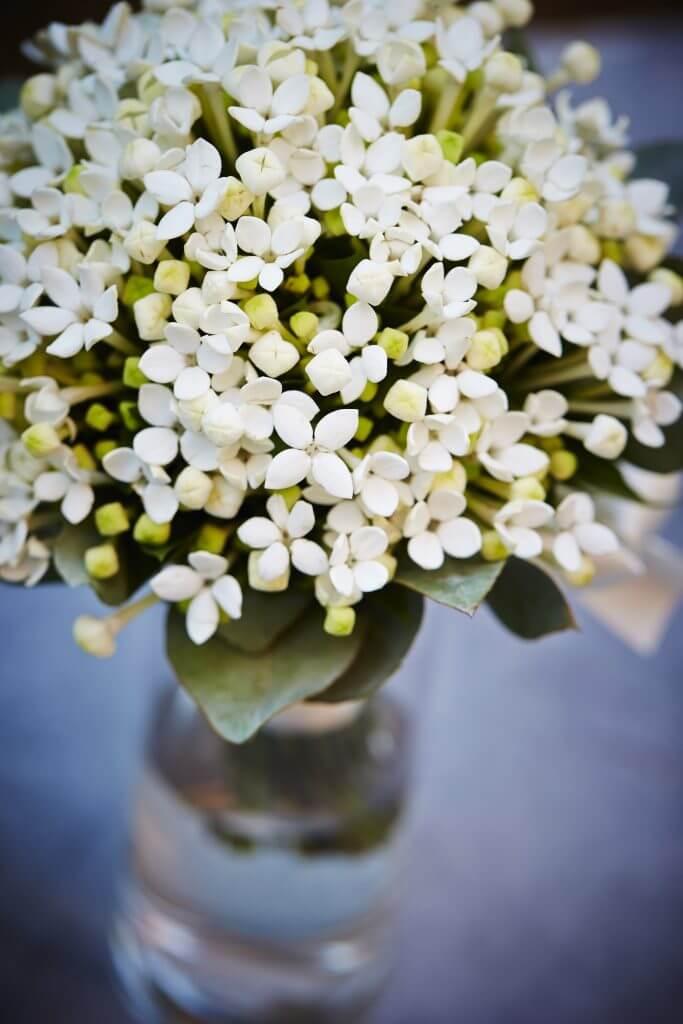 Bouvardia Bridal bouquet