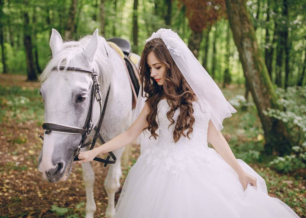 horse wedding transportation idea