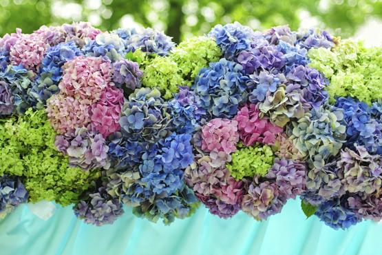 Hydrangea Wedding decoration idea greece