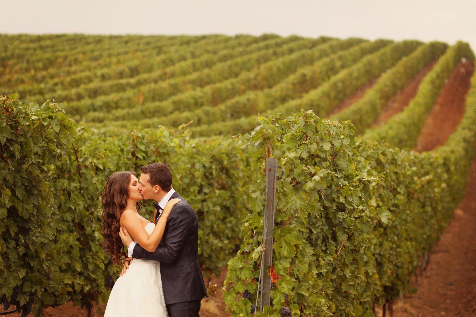 Make Happy Memories Why Greece Wonderful Wineries